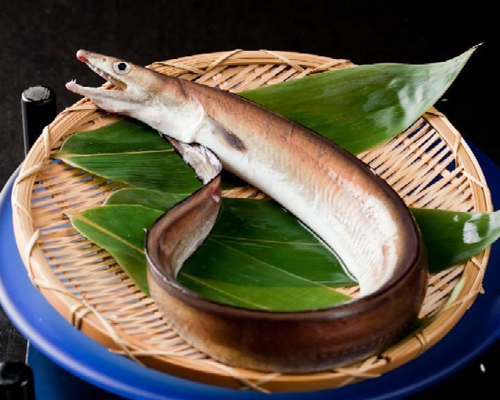 淡路島 魚介・海鮮料理 (すべて)人気ランキン …